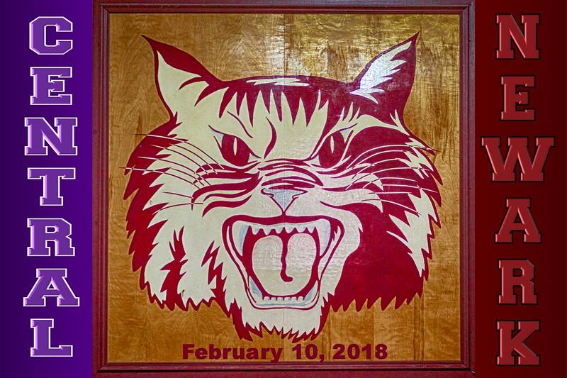 Pickerington High School Central Tigers at Newark High School Wildcats - Saturday, February 10, 2018