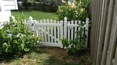 White Avondale Scallop Up Fence