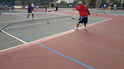 Blended lines and portable nets