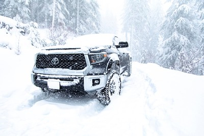Tundra in its element