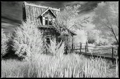 Otis Cabin at Red Oak II view I