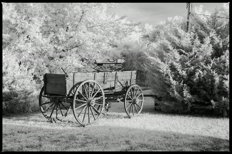 Old Wagon Red Oak II