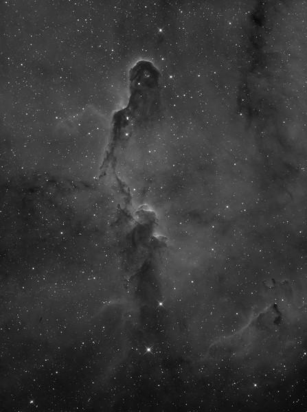 IC1396 Elephant's Trunk nebula in Cepheus