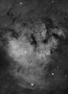 Cederblad 214 & NGC 7822 in Cepheus