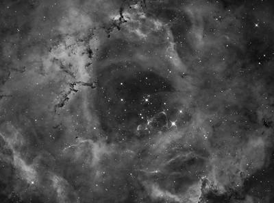 NGC2244 (Caldwell 50) Rosette Nebula in Monoceros