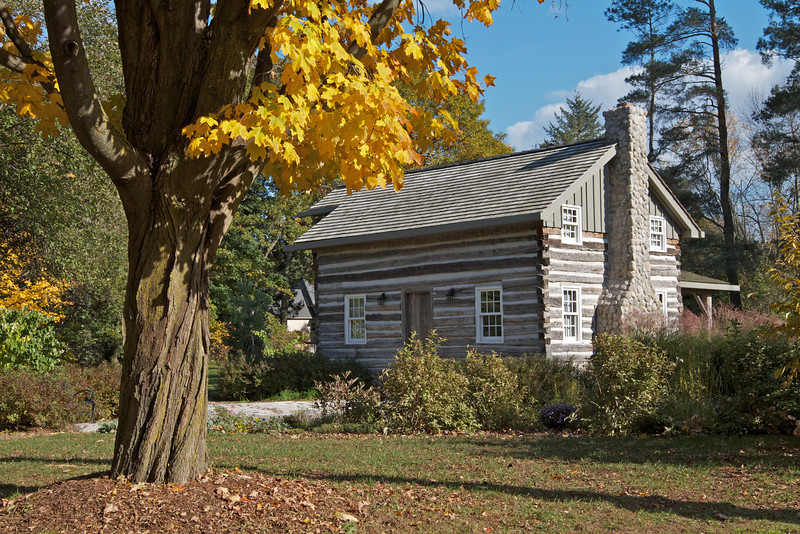 Old log cabin with autumn trees in landscape