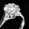 20120217 Ring