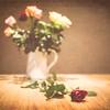 20130915 Roses
