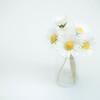 20130607 Friday Flowers