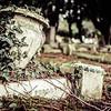 20140219 Forgotten