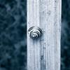 20160906 SE Snail