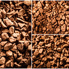 20180323 - Caffeinated Rocks