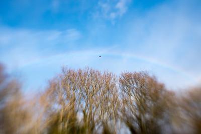 20180119 Lensbaby Rainbow