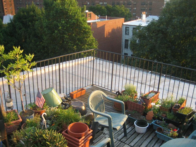JULY 17, 2006<br /> <br /> Apartment hunting on a gorgeous Monday night.  I LOVED this apartment's roofdeck, but it was just too far out in Fort Greene.