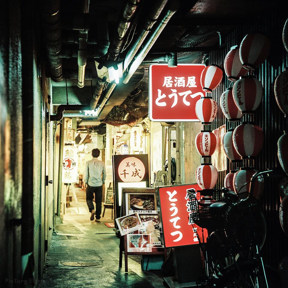 Tokyo Passage