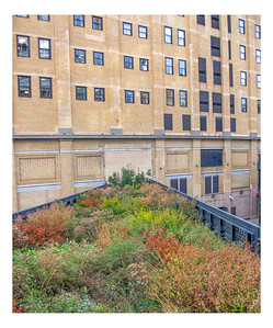 HighLine To Nowhere