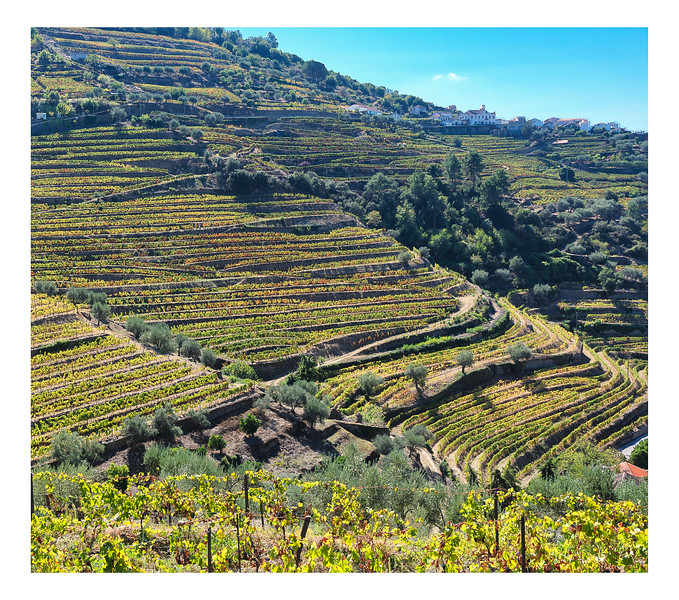 Colours Of The Douro III