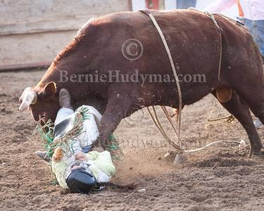 Thats gotta hurt_  DMC 2010 Lady Bull Rider  Lynnette Proulx _M305439