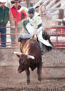 Lady Bull Rider Lynnette Proulx _M305439