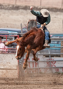 Hang On Cowboy Deadmans Bareback Bronc _M302603