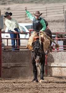 Lady Saddle Bronc Rider-  Kalia Mussell-  71 pts for the WIN _M302809