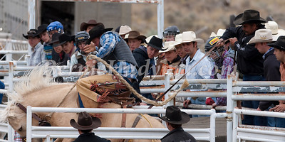 Young Cowboys Look On_  Ashcroft BCRA 09 _M134100