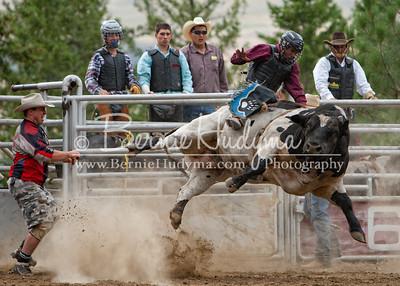 Pritchard Bull Rider 2010 M391052-2