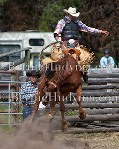 Bridge Lake bronc   _M371161