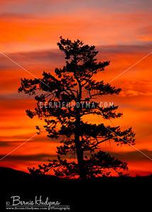 Kamloops November Sunrise a076516