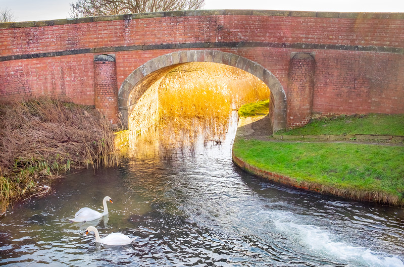 Pocklington Canal in Winter - East Yorkshire UK 2015