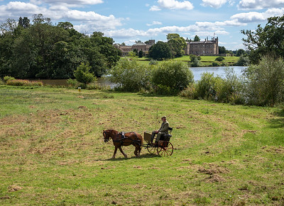 Horse and Trap - Ripley Castle North Yorkshire UK 2017