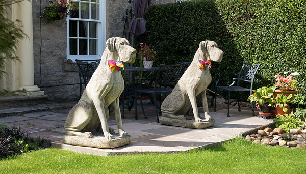 Guard Dogs - Richmond North Yorkshire UK 2017