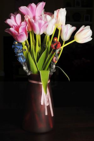 Halo Tulips
