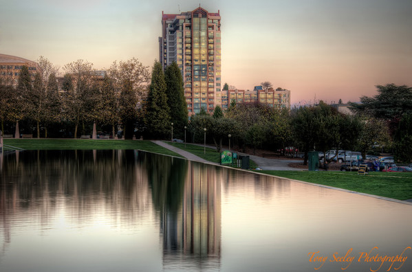 320 Reflection - Bellevue