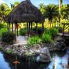 207 Koi Carp Gardens - Maui