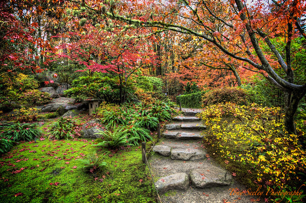 356 Japanese Path - Seattle