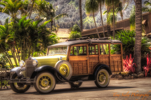 203 Old Ford - Maui