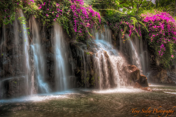 202 Grand Wailea Waterfall - Maui