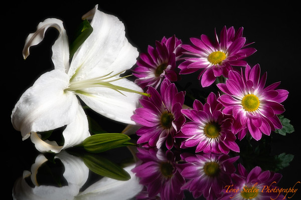007 Flower Reflection - Home