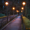 343 Arboretum Bridge - Seattle