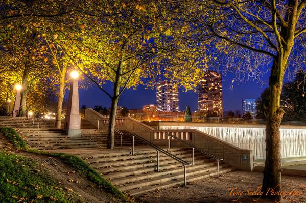 315 Park Stairs - Bellevue
