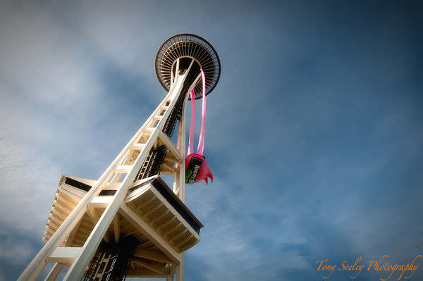 084 Angry Birds Space Needle - Seattle