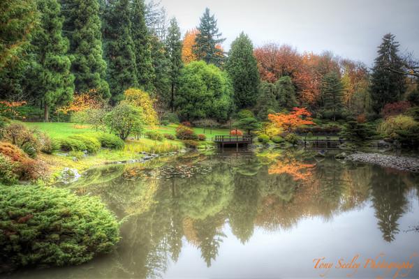 323 Gardens - Seattle