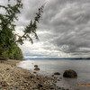 216 Fort Ward State Park - Bainbridge Island