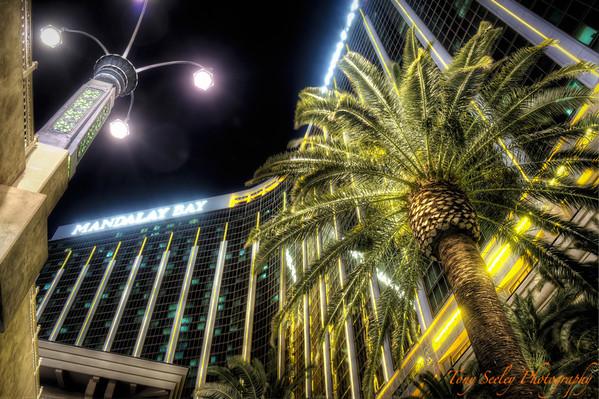 257 Mandalay Bay - Las Vegas