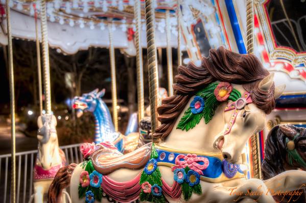 336 Carousel - Redmond