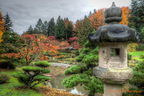 309 Japanese Garden - Seattle