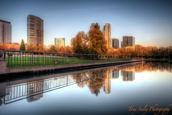 318 City Reflection - Bellevue