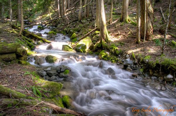 140 Scenic Falls - Stevens Pass