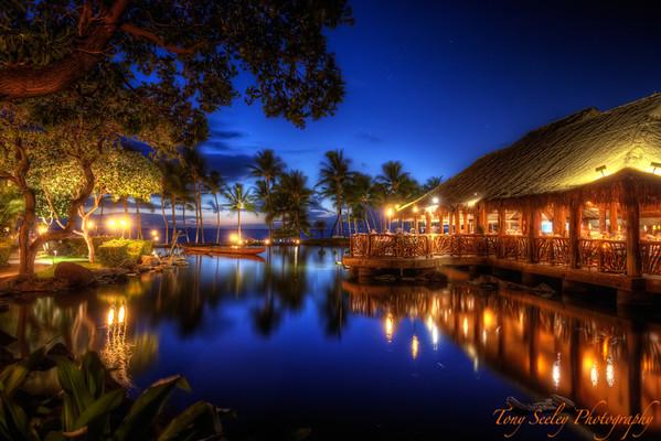 200 Humuhumunukunukuapua'a - Maui